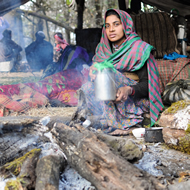 Other_Cookstoves_1